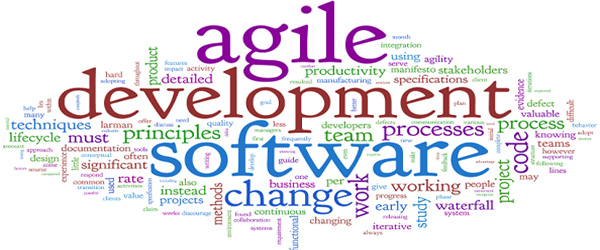 Why Agile Development Fails Sometimes?